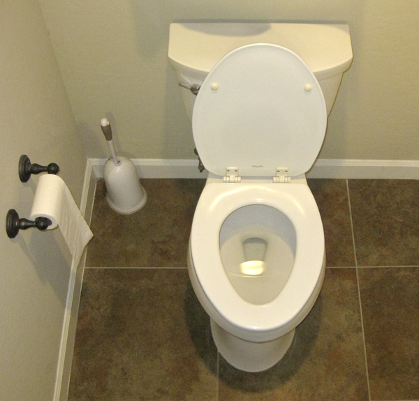 Before Enlightenment Cleaning Toilets Drmeyer S Blog